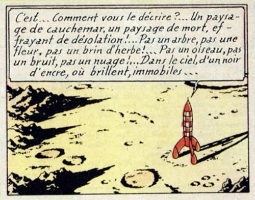Tintin 04